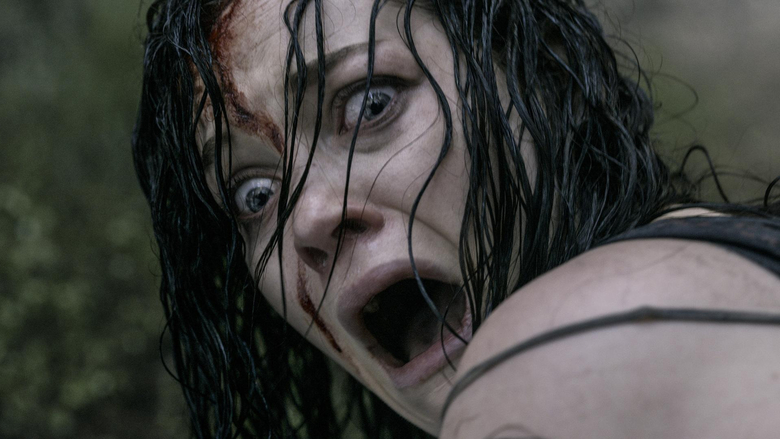 Evil Dead, The 27